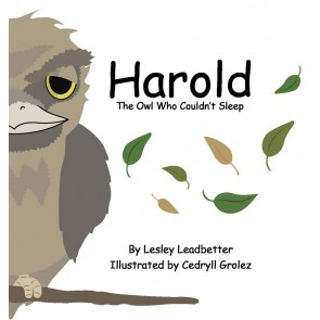 Harold The Owl Who Couldn't Sleep eBk