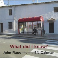 What did I know? Audiobook