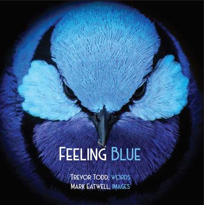 Feeling Blue Cov